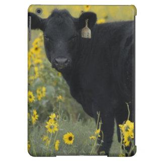 A calf amid the sunflowers of the Nebraska Case For iPad Air