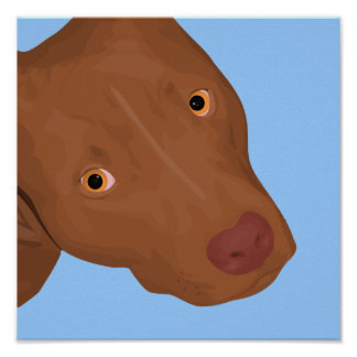 A Cute Pit Bull Portrait Popping Out Poster