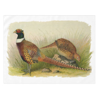 A pair of Ring necked pheasants in a grassy field Tablecloth