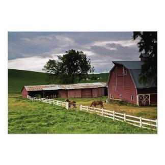 A ride through the farm country of Palouse 4 Photo Print