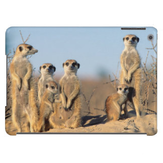A Suricate family sunning themselves at their den Cover For iPad Air