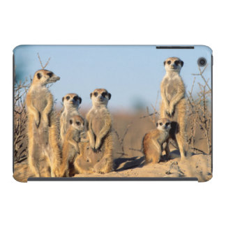 A Suricate family sunning themselves at their den iPad Mini Cover