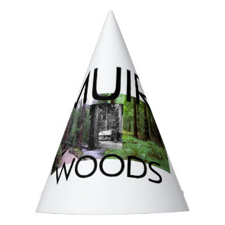 ABH Muir Woods Party Hat