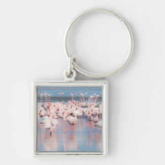 Africa, Namibia, Walvis Bay Silver-Colored Square Key Ring