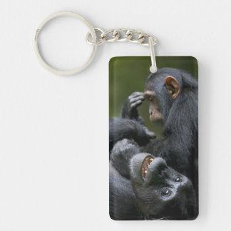 Africa, Uganda, Kibale Forest Reserve, Juvenile 2 Double-Sided Rectangular Acrylic Key Ring