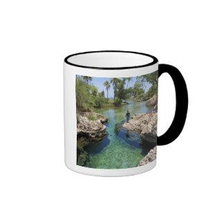 Alligator Hole, Black River Town, Jamaica Ringer Mug