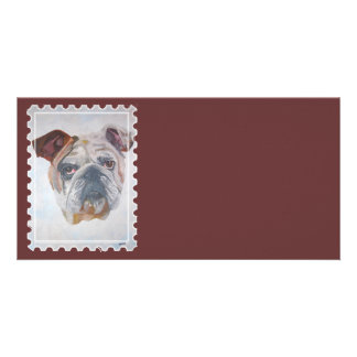 American Bulldog Stamp Motif Photo Cards