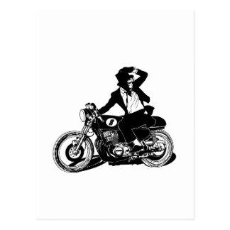 American Recluse Monkey Rider Postcard