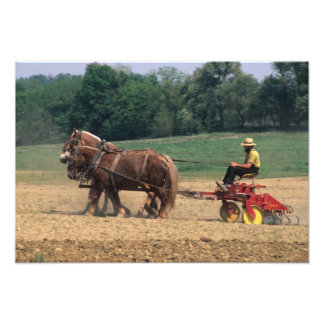 Amish Country simple people in farming with Photo Art