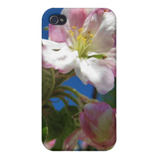 Apple Blossom iPhone Case iPhone 4/4S Cases