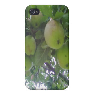 apple tree iPhone 4/4S cover