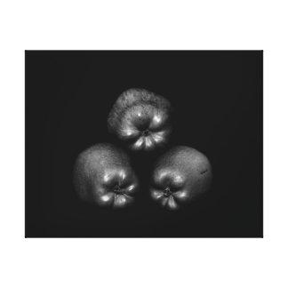 Apples - Fine Art Classic Elegant Fun Unique Gallery Wrapped Canvas