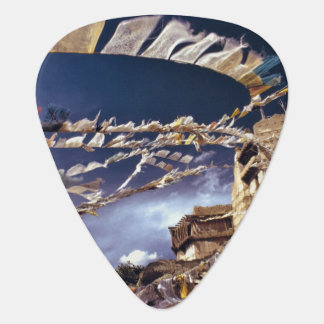 Asia, India, Ladakh, Leh. Known as Little Guitar Pick