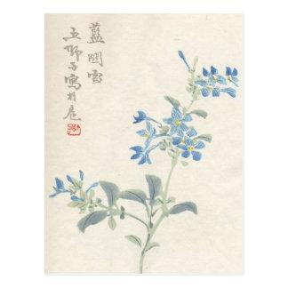 Asian Blossoms Vintage Postcard