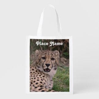Asiatic Cheetah
