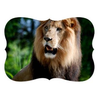 Asiatic Lion of Iran 13 Cm X 18 Cm Invitation Card