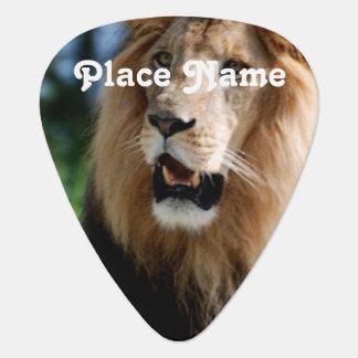 Asiatic Lion of Iran Plectrum
