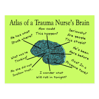 Atlas of a Trauma Nurse's Brain Postcard