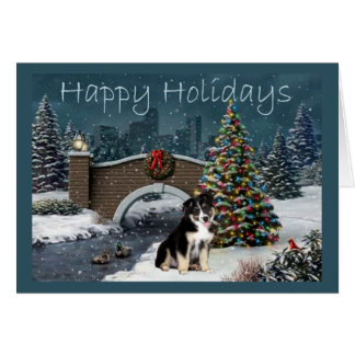 Australian Shepherd Christmas Card Evening