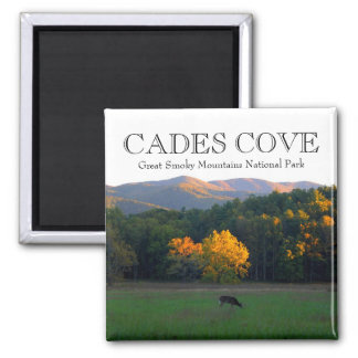 Autumn deer wildlife cades cove great smoky mtns square magnet