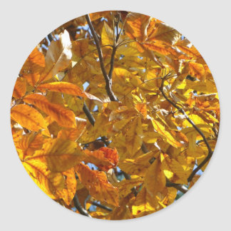Autumn Leaves Gold Gifts Apparel Collectibles Round Sticker