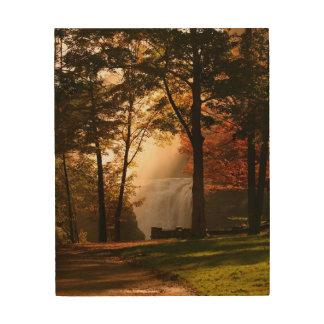 Autumns Waterfall Mist Wood Canvas