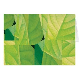 Avocado Leaf Note Card