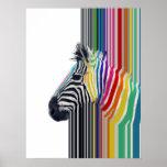 awesome trendy colourful vibrant stripes zebra poster