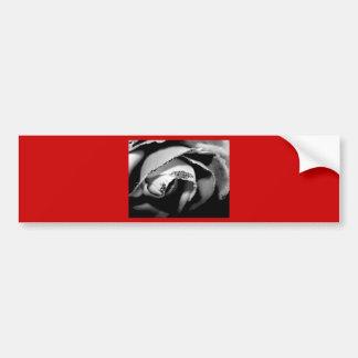 B&W Rose Bumper Sticker