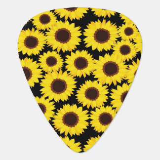 Background with sunflowers plectrum