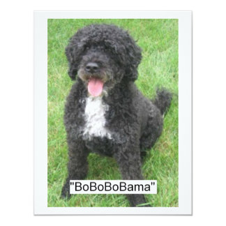 Barack Obama Portuguese Water Dog 11 Cm X 14 Cm Invitation Card