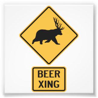 Bear Deer Beer Crossing Photograph