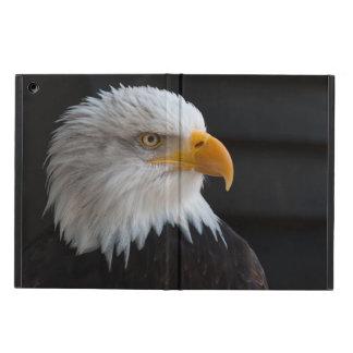 Beautiful bald eagle portrait iPad air cases