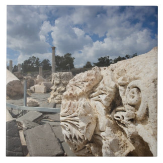 Beit She-An National Park, Roman-era ruins Large Square Tile