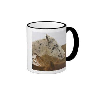 Big Horn Mountains, Horses in The Snow Ringer Mug