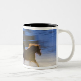 Big Horn Mountains, Horses Running in the Snow Two-Tone Mug