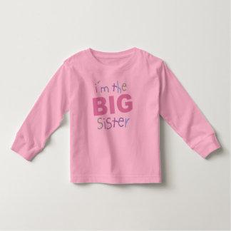 Big Sister Toddler Long Sleeve Shirt