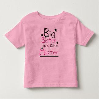 Big Sister Toddler Ringer T-Shirt