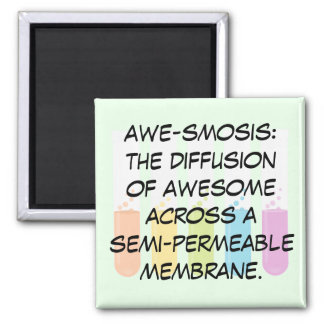 Biology & Chemistry Teachers: Science is Awesome Square Magnet