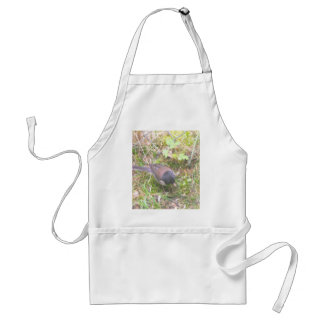 Birds, trees, mountains, nature, love, scenery, standard apron