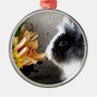 Black and white dwarf rabbit Silver-Colored round decoration