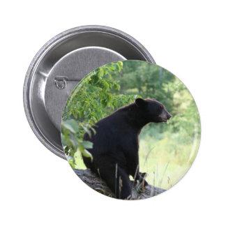 black bear sitting in tree 6 cm round badge