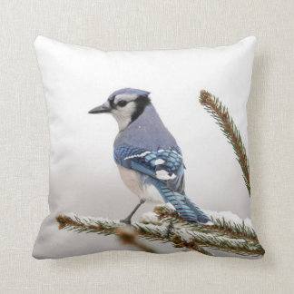 Blue Jay in Winter Cushion