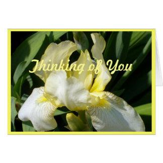 Blushing Yellow Blue Iris Note Card