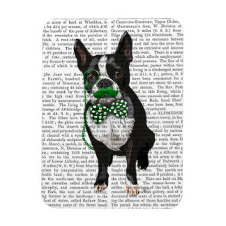 Boston Terrier With Green Moustache And Spotty Rectangular Photo Magnet