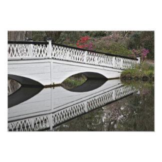 Bridge reflecting on pond, Magnolia Photo Print