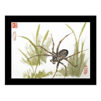 Brown Recluse Spider Postcard