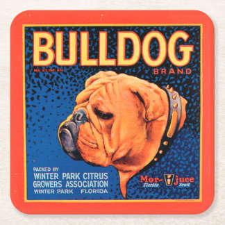 Bull Dog on a Blue Background Square Paper Coaster