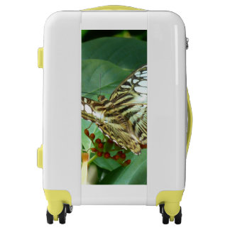 Butterfly Luggage