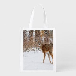 Button Buck Deer in Winter White Snowy Field